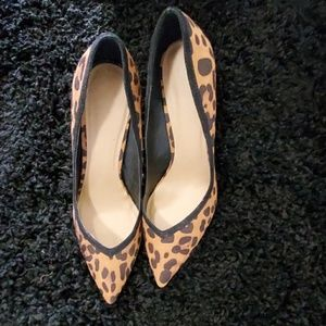 Asos Leopard print shoes
